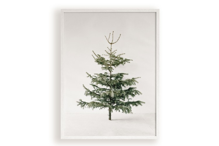 Poster print: TREE.06 (60 x 80 cm)