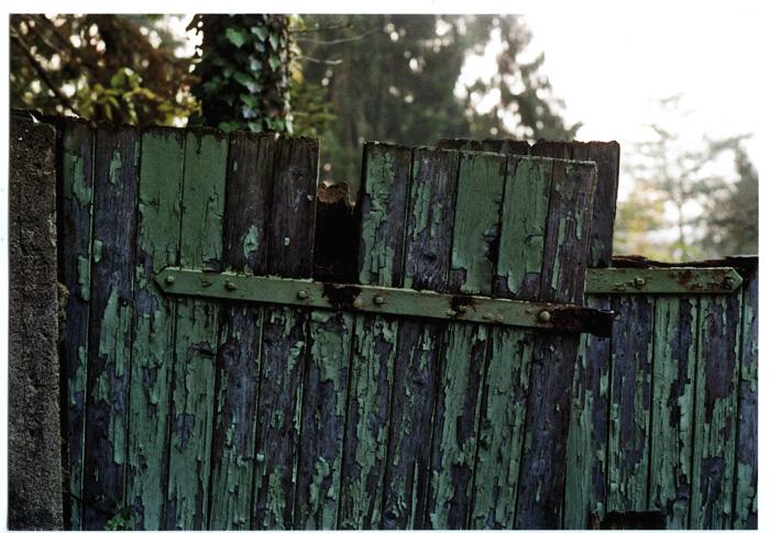 bastisRIKE: ANALOGUE AUTUMN 2012