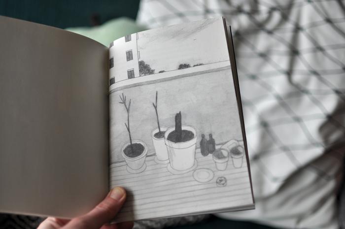 KIMHIORTHOY_PLANTS