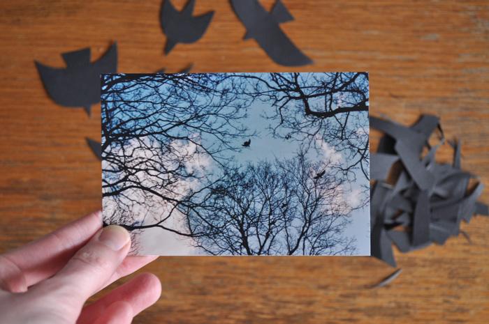 bastisRIKE PAPERCUT BIRDS INSPIRATION