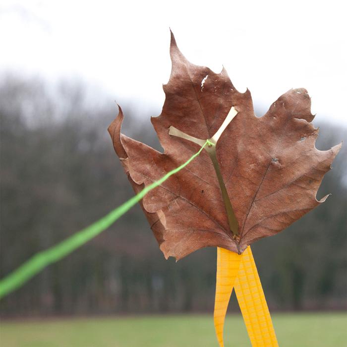 NIENKE VOORINTHOLT sleep less and dream more - leaf kite