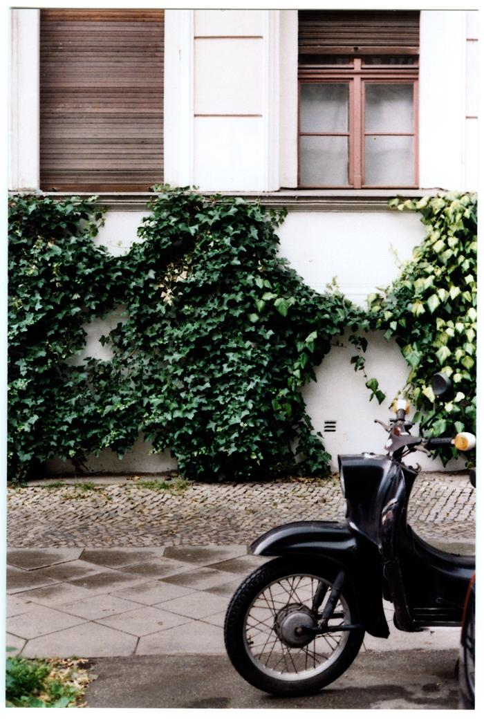 bastisRIKE gruenes berlin